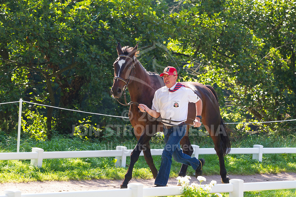 Gerts Schrijvers, (BEL), El Fiero, Giganta A, Onyx, Replay, Victor K - Horse Inspection Driving - Alltech FEI World Equestrian Games™ 2014 - Normandy, France.<br /> © Hippo Foto Team - Leanjo de Koster<br /> 25/06/14