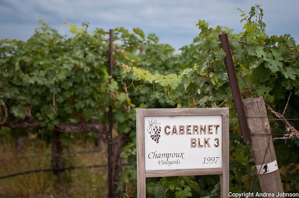 Champoix vineyard, Horse Heaven Hills, Washington