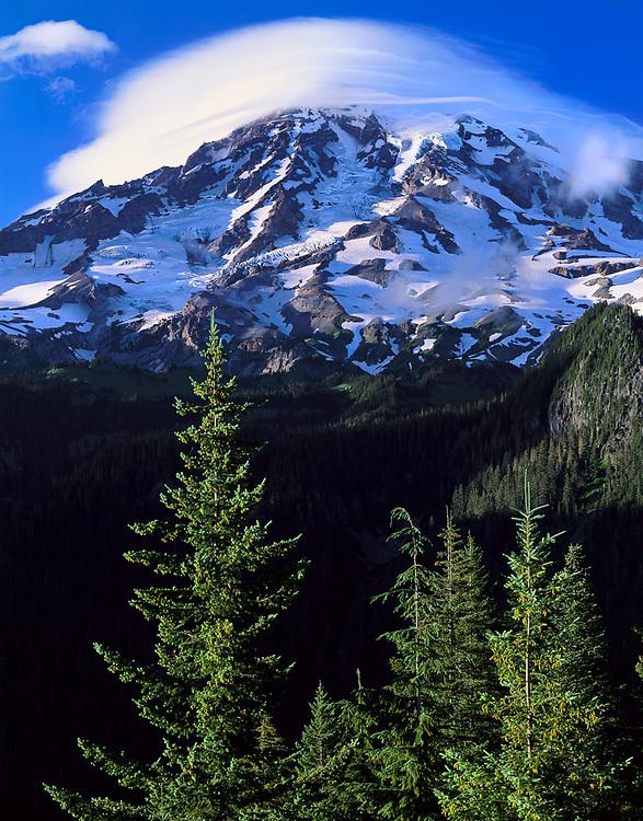 Mount Rainier veiwed from  Ricksecker Point, Mount Rainier National Park, Washington, USA