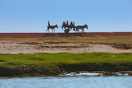 A family travels on a donkey carriage, on the shore of the Niger river, Mali.