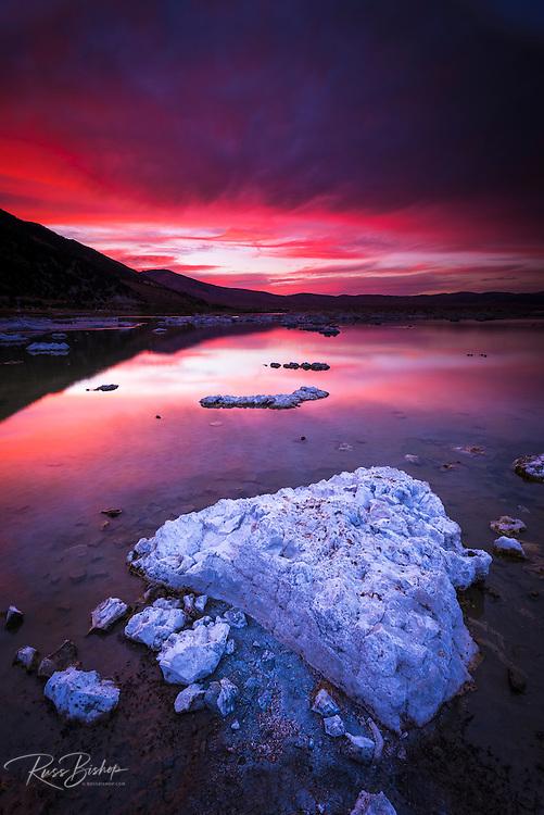 Evening light over tufa at Mono Lake, Mono Basin National Scenic Area, California USA