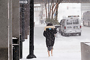 29 DECEMBER 2020 - DES MOINES, IOWA: A woman walks down a street in Des Moines during the heaviest snowfall so far of the 2020-21 winter. Des Moines was expected to get about 8 inches of snow before Wednesday morning. Statewide, across Iowa, more than 900 snowplows have been called out to clear the roads.   PHOTO BY JACK KURTZ