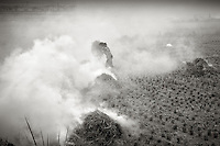 Woman burning the rice stalks and preparing the fields for the next crop. Near Wenzhou, Zhejiang China.