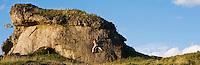 Climber Bouldering, Zogenreuth, Oberpfalz, Germany