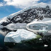 Neko Harbor / Antarctica | Photos