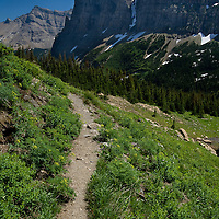 Stoney Indian Pass Trail winds toward Pyramid Peak in Glacier National Park's backcountry.