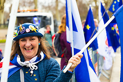 A woman with her hat decorated with gold stars and badges demonstrates with fellow anti-Brexit campaigners outside the Houses of Parliament in London. London, January 14 2019.