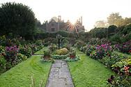 Sunrise over  mixed dahlia borders in the Sunken Garden at Chenies Manor House, Chenies, Rickmansworth, Buckinghamshire, UK