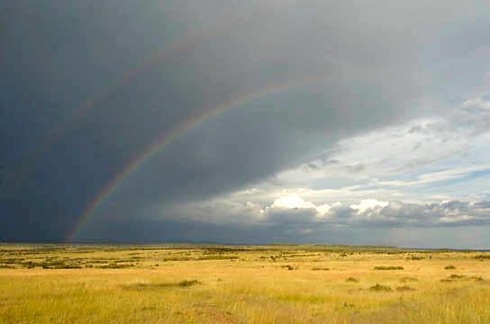 Rainbow over Masai Mara after rains. Masai Mara National Park. Kenya. Africa. Early March.