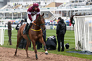Road To Respect and jockey Sean Flanagan head to the start for the 2.50pm The Betway Bowl Steeple Chase (Grade 1) 3m 1f during the Grand National Festival Week at Aintree, Liverpool, United Kingdom on 4 April 2019.
