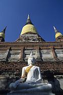 Holy and festivity dress on Wat Yai Chai Monghon