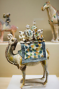 Camel figure on display in the Shaanxi History Museum, Xian, China