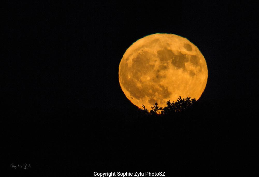 Blue Moon of Halloween 2020