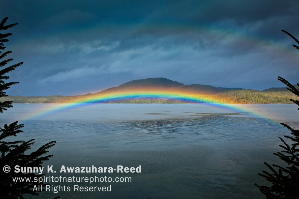 Low arching Rainbow adorns the waters of Clover Passage, Ketchikan, SE Alaska in early summer. Betton Island is in the background.