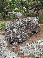 Cornwall, New York - A glacial erratic boulder on the Western Ridge Trail seen during a  Schunnemunk Mountain hike on May 28, 2018.