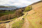 Lakeland scenery around Howtown, Ullswater, Lake District national park, Cumbria, England, UK
