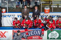 KELOWNA, CANADA - APRIL 8: Portland Winterhawks' assistant coach Oliver David stands on the bench next to head coach Mike Johnston against the Kelowna Rockets on April 8, 2017 at Prospera Place in Kelowna, British Columbia, Canada.  (Photo by Marissa Baecker/Shoot the Breeze)  *** Local Caption ***