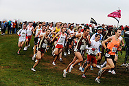 24 NOV 2008:  The men's field through one of the loops on the 1st lap during 2008 the NCAA Men and Women's Division I Cross Country Championship hosted by Indiana State University held at the Wabash Valley Family Sports Center in Terre Haute, IN. while Galen Rupp of the University of Oregon placed 1st with a time of 29:03.2 to win the men's national title, while the University of Oregon also won the men's team title.  Brett Wilhelm/NCAA Photos