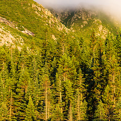 Fog on the Cathedral Trail on Mount Katahdin in Maine's Baxter State Park.