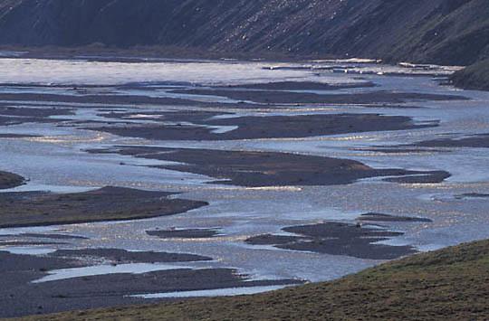 Alaska,  Arctic National Wildlife Refuge. ANWR.