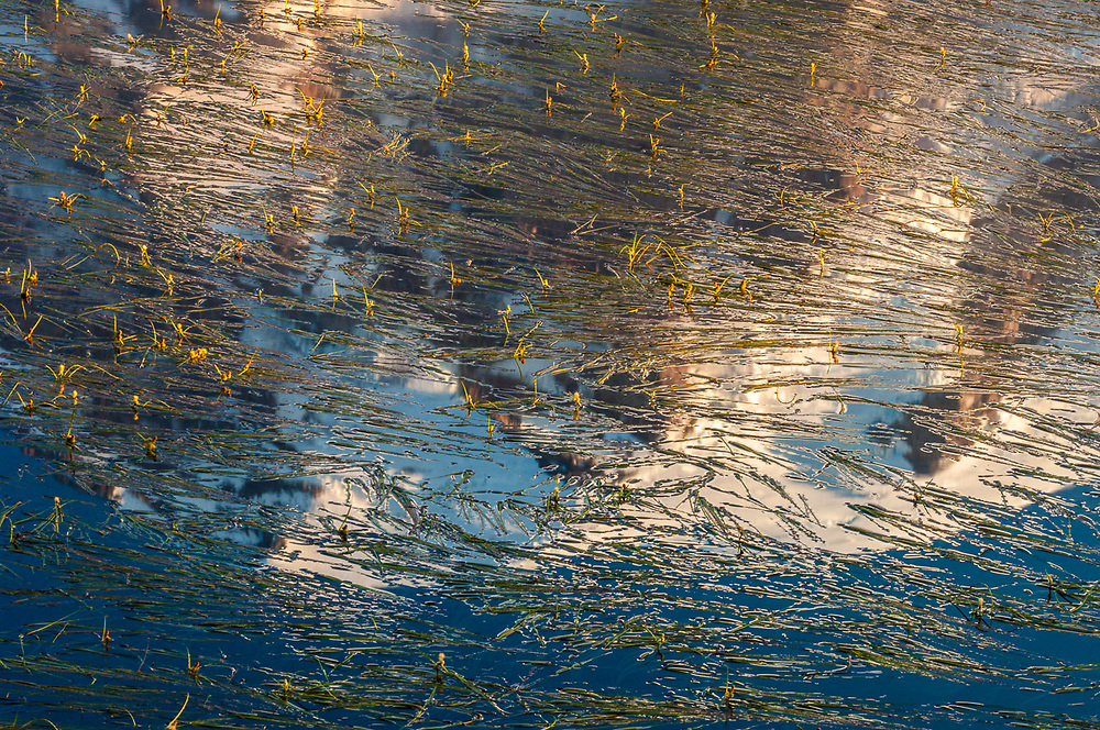 Reflection Lake, morning light, August, Mount Rainier National Park, Washington, USA