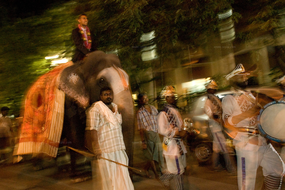 Groom arriving on an elephant with the baraat (wedding procession) during a South Indian Traditional Tamil Brahmin Wedding