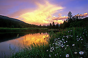 Yaak River at sunrise in summer. Yaak Valley in the Purcell Mountains, northwest Montana