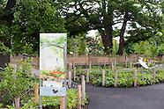 Discovery Garden | Empty