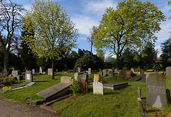 Nieuwe Algemene Begraafplaats, Bosdrift, Hilversum, Noord Holland, Netherlands