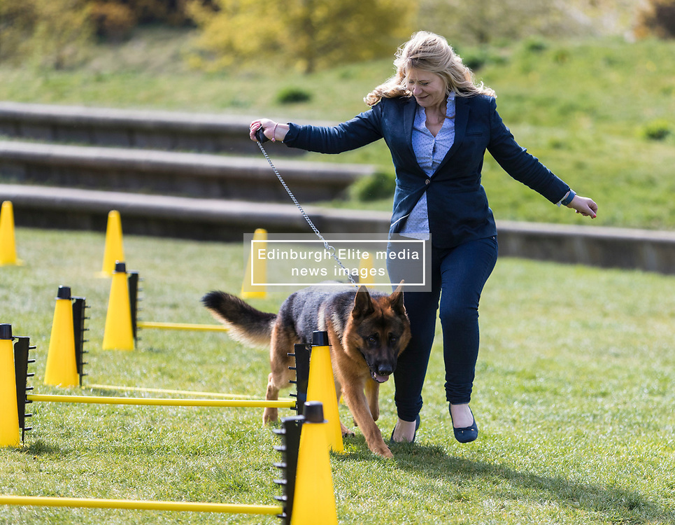 MSPs display their dogs and put them through an agility course with the winner decided by a public vote on the day.<br /> <br /> Pictured: Pauline McNeill with her dog Harry