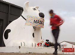 """SOUTH AFRICA - Cape Town - 03 June 2020 - Coronavirus Lockdown - The original Spotty Dog stood proud at its home on the Main Road of Retreat in Cape Town. He was, according to an advert released by his then-owners, South Africa's first canine-shaped roadhouse when he was assembled in 1938. He was designed for a Mrs Barnes with the official designated usage of a """"hot dog saloon,"""" but over the years his duties morphed and at one point he was even used as a vendor of fruit and vegetables. Today, a smaller version of the Spotty Dog stands in the same but vastly altered location outside Bu Co in Retreat. Recently, the famous dog was spotted wearing a large fabric mask which reads, """"Mask On"""".  Picture: Tracey Adams/African News Agency(ANA)"""