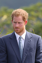 Prince Harry makes a speech at a youth rally at Brimstone Hill Fortress after arriving on the island of St Kitts for the second leg of his Caribbean tour.