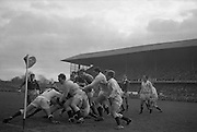Irish forward Mulcahy in possession held by three Englishmen, Cook 11, Judd 3, and Richards 2, as he tries to score on corner flag after break away on blind side of a scrum five yards from English line, ..Irish Rugby Football Union, Ireland v England, Five Nations, Landsdowne Road, Dublin, Ireland, Saturday 13th February, 1965,.13.2.1965, 2.13.1965,..Referee- H S Laidlaw, Scottish Rugby Union, ..Score- Ireland 5 - 0 England, ..Irish Team, ..T J Kiernan,  Wearing number 15 Irish jersey, Full Back, Cork Constitution Rugby Football Club, Cork, Ireland,..P J Casey, Wearing number 14 Irish jersey, Right Wing, Landsdowne Rugby Football Club, Dublin, Ireland, ..M K Flynn, Wearing number 13 Irish jersey, Right Centre, Wanderers Rugby Football Club, Dublin, Ireland, ..K J Houston, Wearing number 12 Irish jersey, Left Centre, Bruff Rugby Football Club, Limerick, Ireland, and, Oxford University Rugby Footabll Club, Oxford, England,..P J McGrath,  Wearing number 11 Irish jersey, Left Wing, University college Cork Rugby Football Club, Cork, Ireland,..C M H Gibson, Wearing number 10 Irish jersey, Stand Off, Cambridge University Rugby Football Club, Cambridge, England, and, N.I.F.C, Rugby Football Club, Belfast, Northern Ireland, ..R M Young, Wearing number 9 Irish jersey, Scrum Half, Queens University Rugby Football Club, Belfast, Northern Ireland,..S MacHale, Wearing number 1 Irish jersey, Forward, Landsdowne Rugby Football Club, Dublin, Ireland, ..K W Kennedy, Wearing number 2 Irish jersey, Forward, Queens University Rugby Football Club, Belfast, Northern Ireland,..R J McLoughlin, Wearing number 3 Irish jersey, Captain of the Irish team, Forward, Gosforth Rugby Football Club, Newcastle, England, ..W J McBride, Wearing number 4 Irish jersey, Forward, Bective Rangers Rugby Football Club, Dublin, Ireland,  ..W A Mulcahy, Wearing number 5 Irish jersey, Forward, Bective Rangers Rugby Football Club, Dublin, Ireland,  ..M G Doyle, Wearing number 6 Irish jersey, Forward, University Col