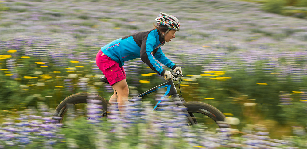 Elizabeth Sampey (FatBack Bikes).  Southwestern Iceland.