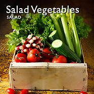Vegetables Salad   Salad Ingredients Pictures Photos Images & Fotos