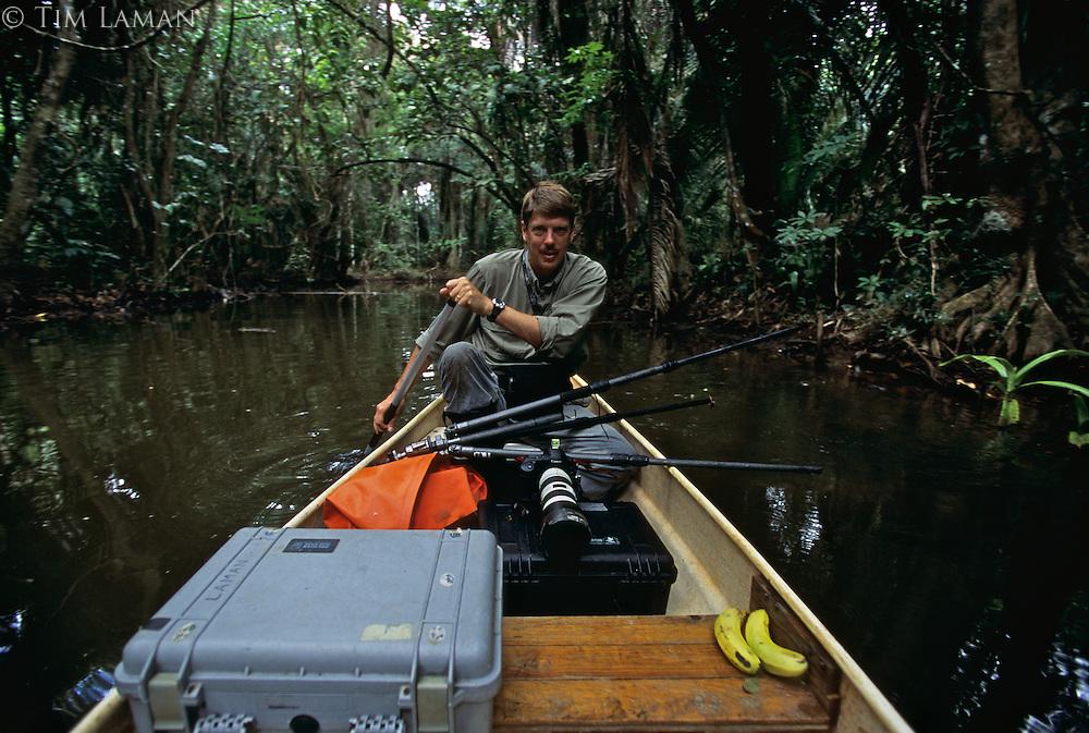 Photographer Tim Laman kayacking down Boom Creek.  Bloodwood trees grow along a stream in a mangrove swamp..Boom Creek, Belize.