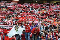20100509: LISBON, PORTUGAL - SL Benfica vs Rio Ave: Portuguese League 2009/2010, 30th round. In picture:  Benfica Supporters. PHOTO: Alvaro Isidoro/CITYFILES