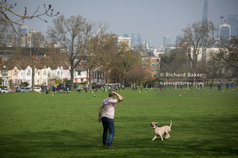 A dog waits for its owner to throw a ball, on 14th April 2018, in Ruskin Park, London borough of Lambeth, England.