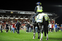 A police horse looks over the crowd on the pitch - Photo mandatory by-line: Dougie Allward/JMP - Tel: Mobile: 07966 386802 04/09/2013 - SPORT - FOOTBALL -  Ashton Gate - Bristol - Bristol City V Bristol Rovers - Johnstone Paint Trophy - First Round - Bristol Derby
