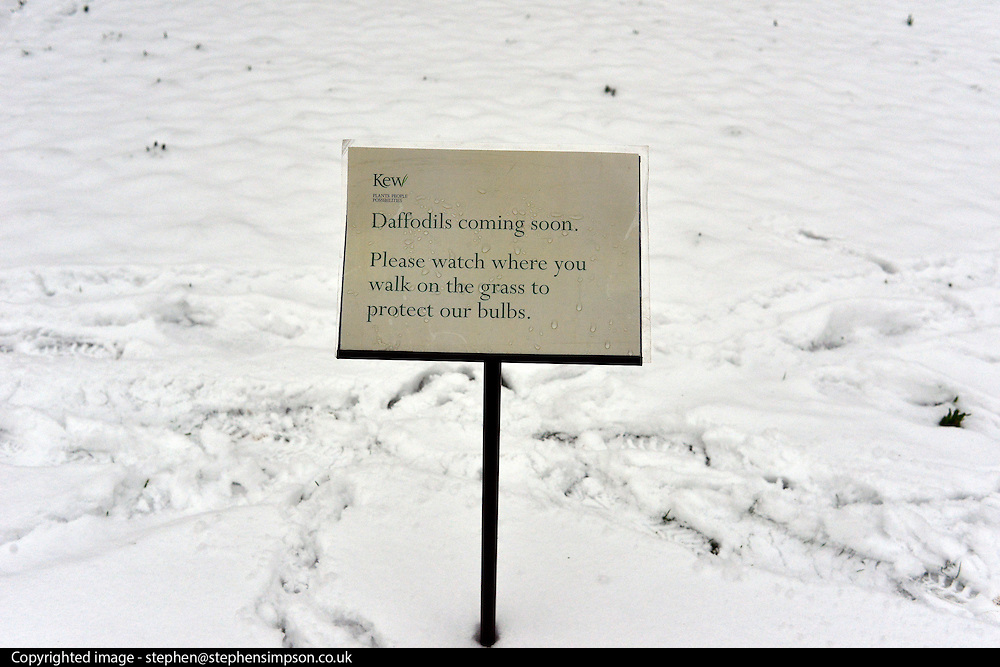 © Licensed to London News Pictures. 19/01/2013. Kew, UK A sign warning of the arrival of spring. People enjoy the snow at Kew Gardens in West London today 19th January 2013. More cold weather and snow are expected over the coming days.  Photo credit : Stephen Simpson/LNP