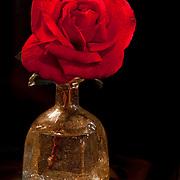 Red rose on bottle.