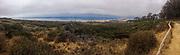 View of Morro Bay from Montana de Oro State Park, San Luis Obispo County, California, USA