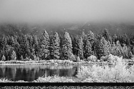An ice fog covers the trees and landscape along HWY 200 in Montana.
