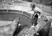 29/4/1966<br />