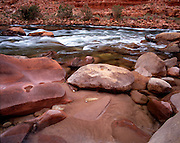 Redbud Canyon Camp, Colorado River mile 39, Grand Canyon National Park, Arizona, USA; 3 May 2008; Pentax 67II, 55mm lens, Velvia 100