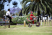 Penny farthing bicycle and Father Christmas. 2009 Guildford Heritage Festival, Western Australia