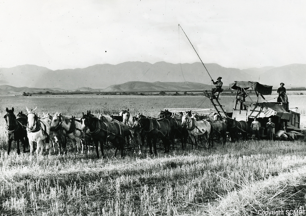 1905 Harvester on the Van Nuys - Lankershim Ranch