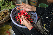 A vendor arranging her red chilli peppers at Phsar Kandal morning market in Phnom Penh, the capital city of Cambodia. A large variety of local products are available for sale in fresh markets all over Cambodia, all being sold on small individual stalls.