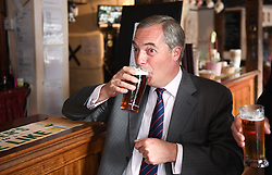Former Ukip leader Nigel Farage has a pint in a pub in South Thanet while on the general election campaign trail.