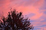 USA, Oregon, Keizer, morning sky.